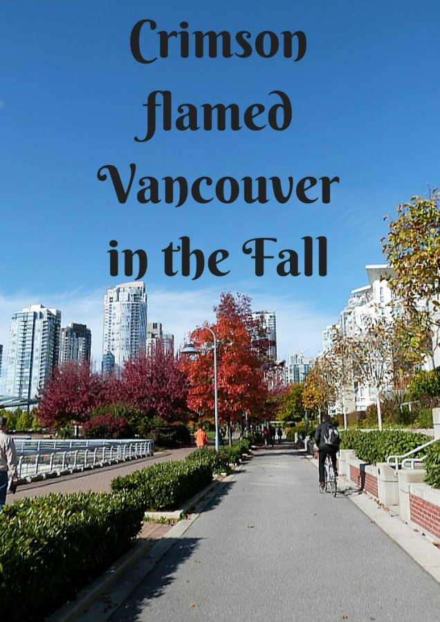 Crimson flamed Vancouver in the Fall