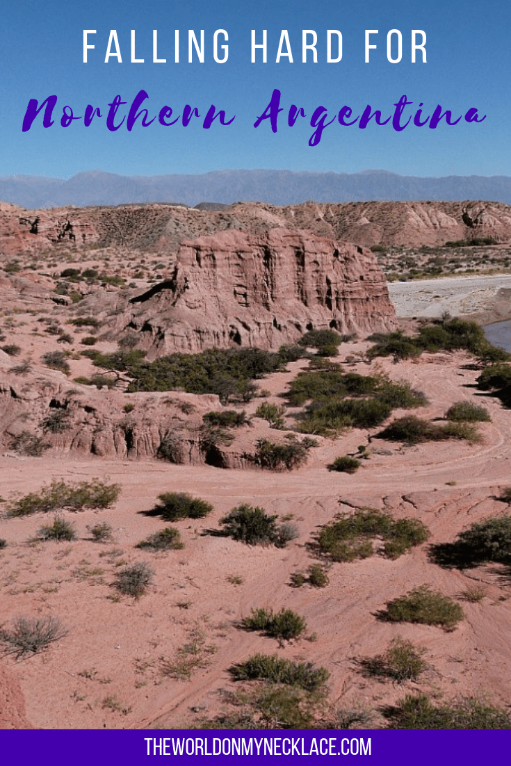 Falling Hard for Northern Argentina