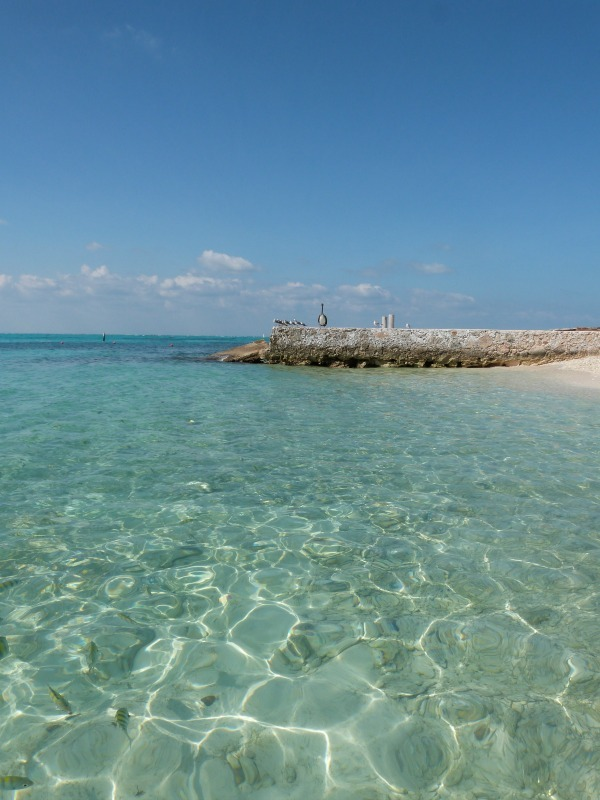 Super clear water and tropical fish on Isla Mujeres, Mexico
