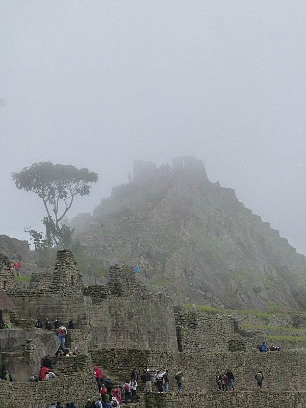 Misty Machu Picchu in Peru