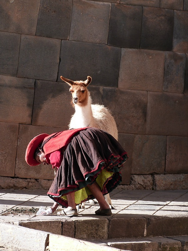 Local lady and her llama in Cusco, Peru