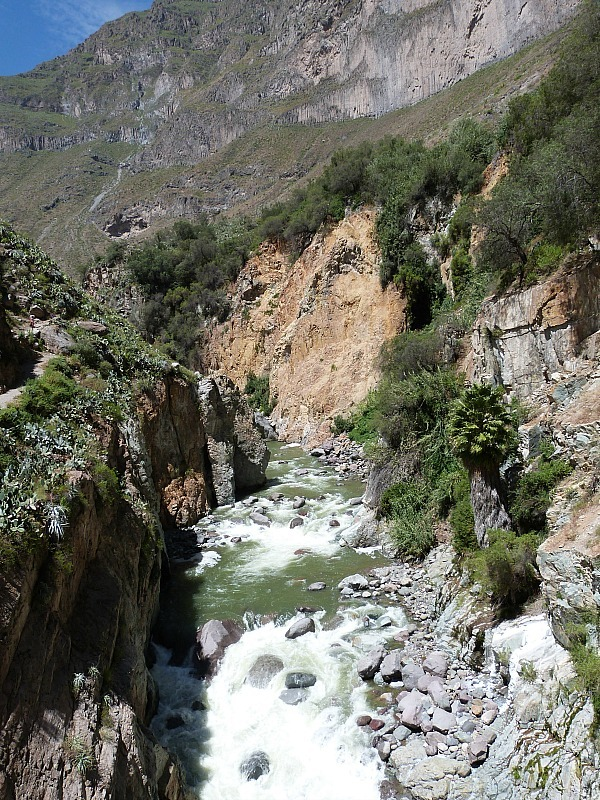 Raging river in the Colca Canyon, Peru