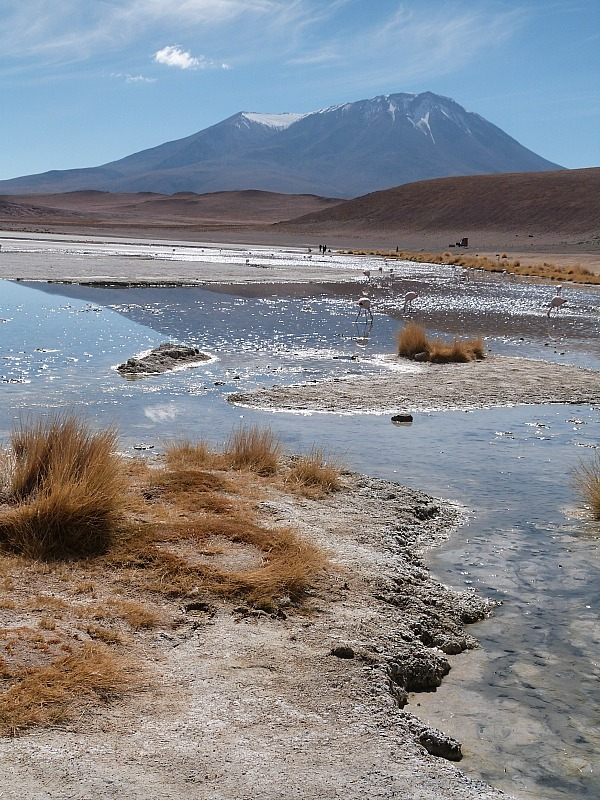 Beautiful lake with flamingos in remote South West Bolivia