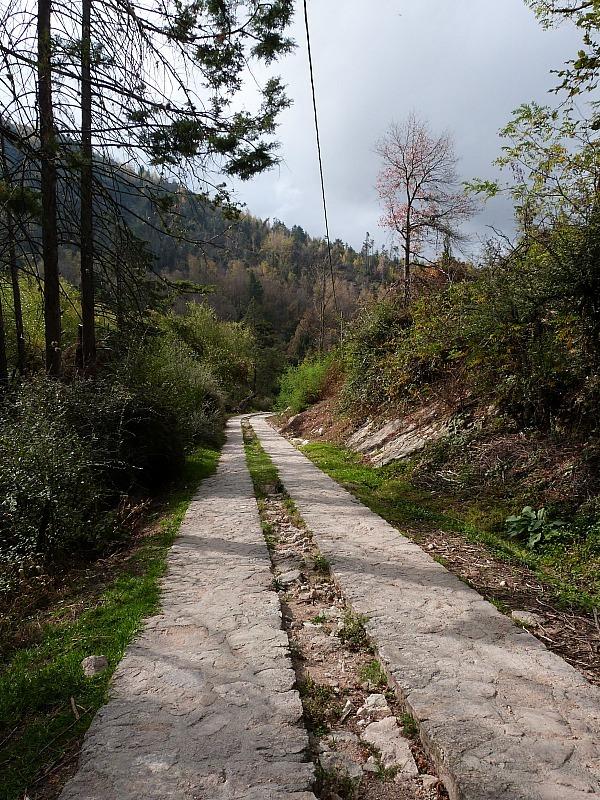 Walking trail in La Cumbrecita, Northern Argentina