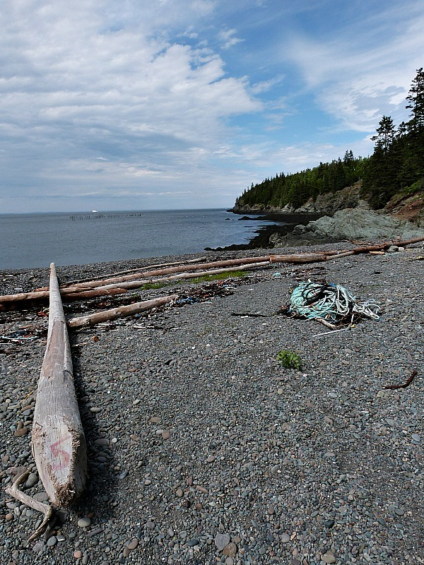 Coastline of Grand Manan Island, New Brunswick