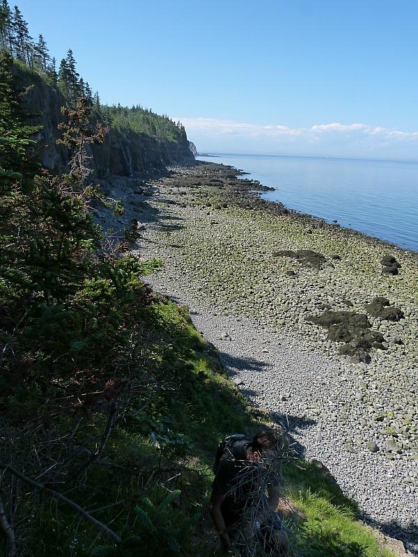Rugged coastline on Grand Manan Island, New Brunswick