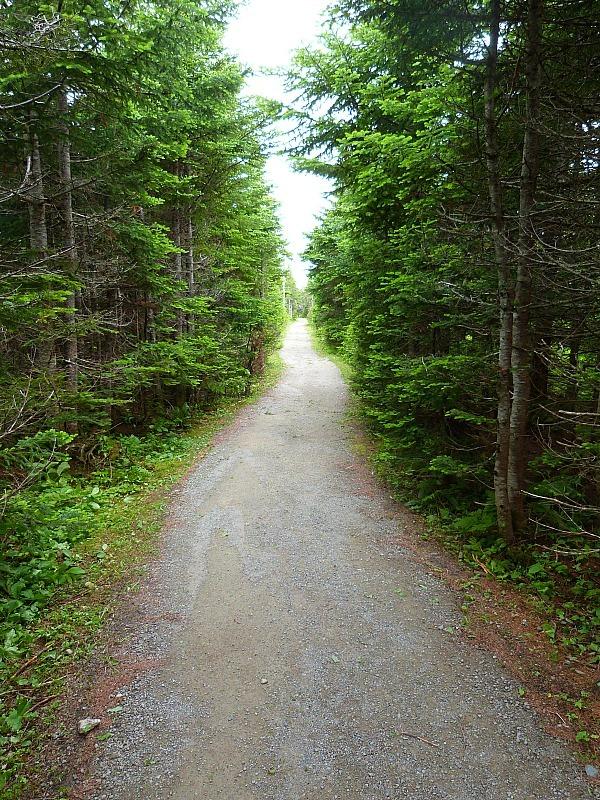 Hiking trail in Cape Breton Highlands National Park, Nova Scotia