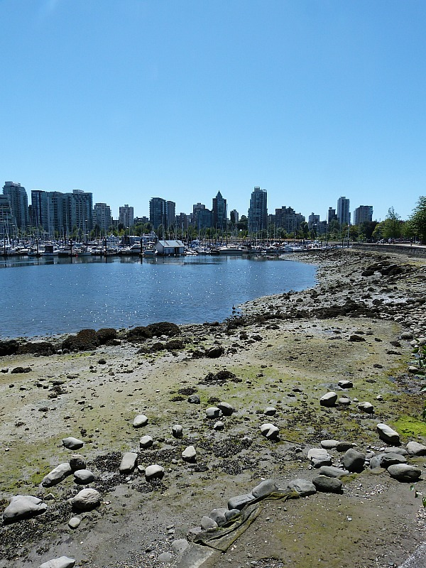 Coal Harbour in Vancouver