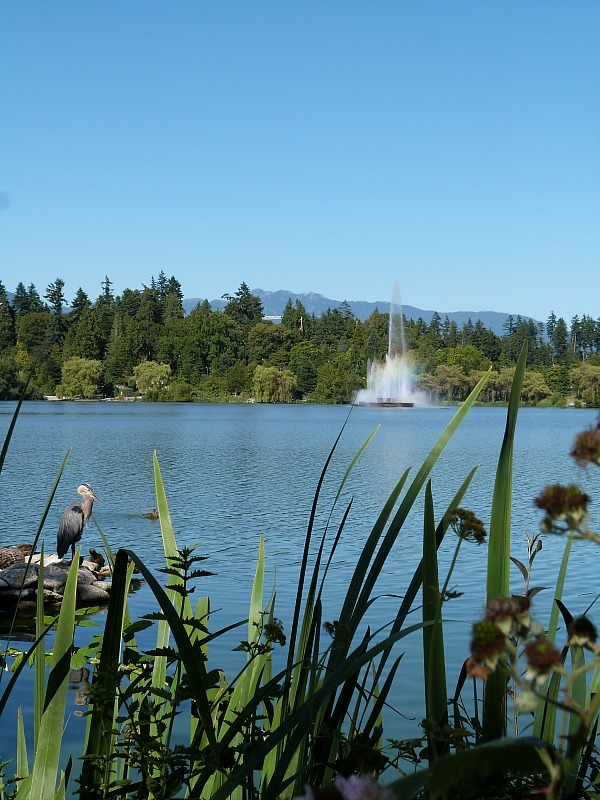 Lost Lake in Stanley Park, Vancouver