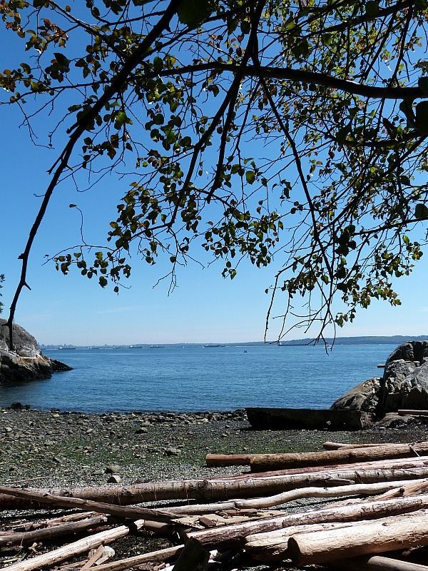 Lighthouse Park Beach in North Vancouver
