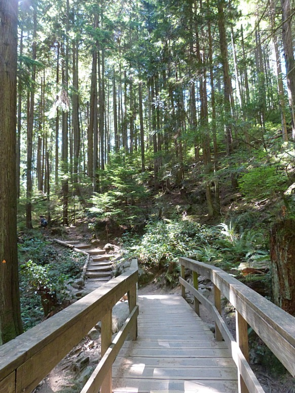 Hiking trail to Quarry Rock from Deep Cove in Vancouver