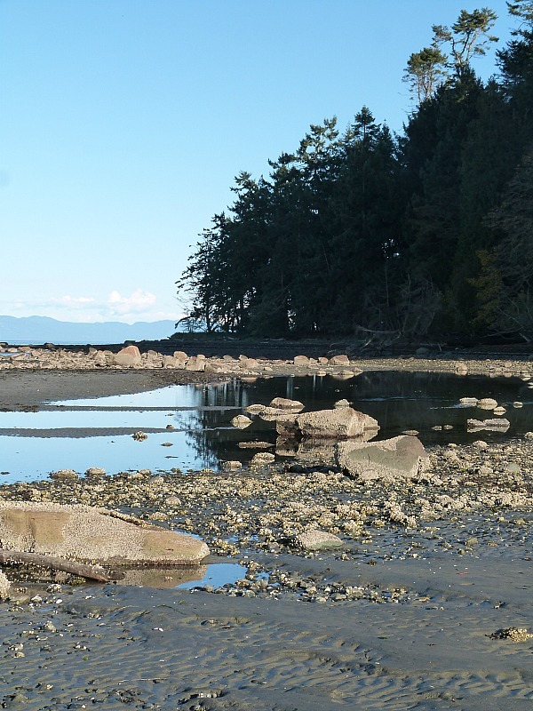 Exploring the coast of Denman Island in Canada