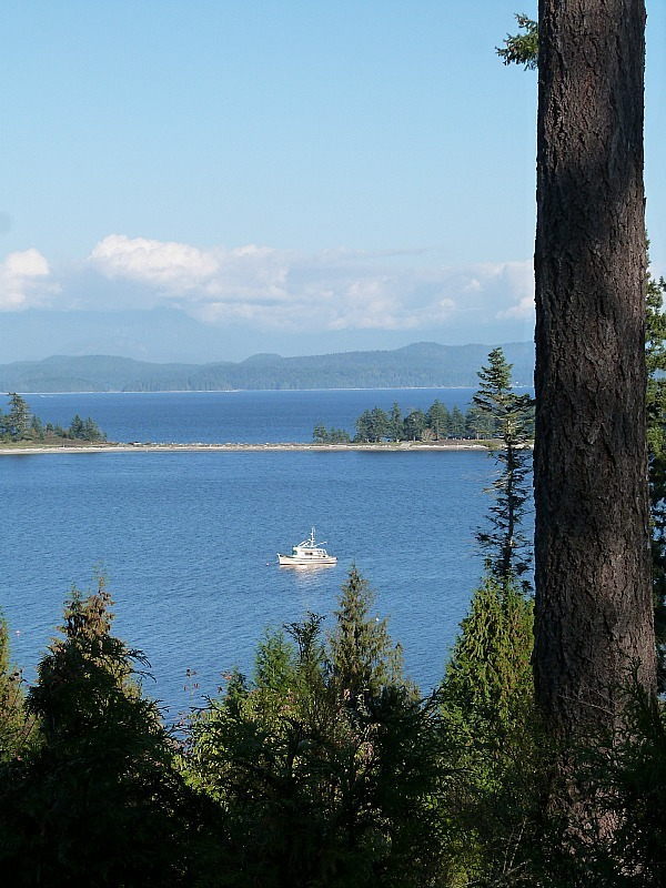 View over Rebecca Spit on Quadra Island Canada