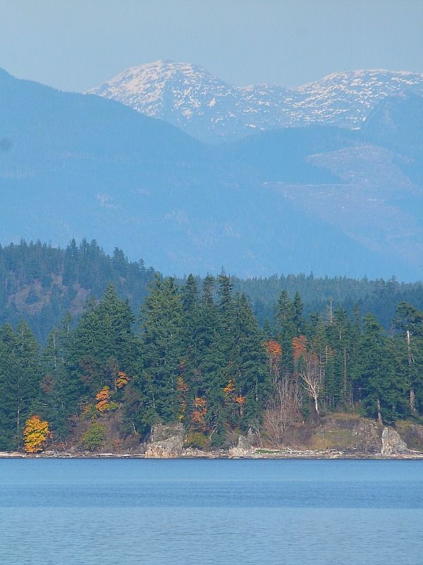Impossibly beautiful Quadra Island, BC