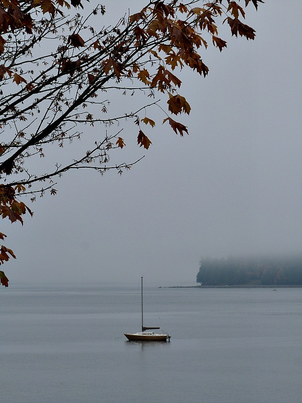 Foggy Vancouver in Fall