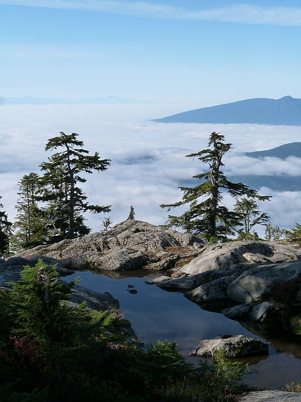 View from Lions Binkert Trail near Vancouver