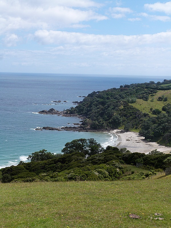 Hiking on Waiheke Island in Auckland