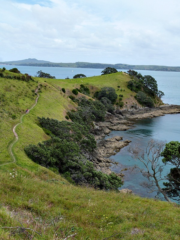 Hiking from Matiatia Beach on Waiheke Island in Auckland, New Zealand