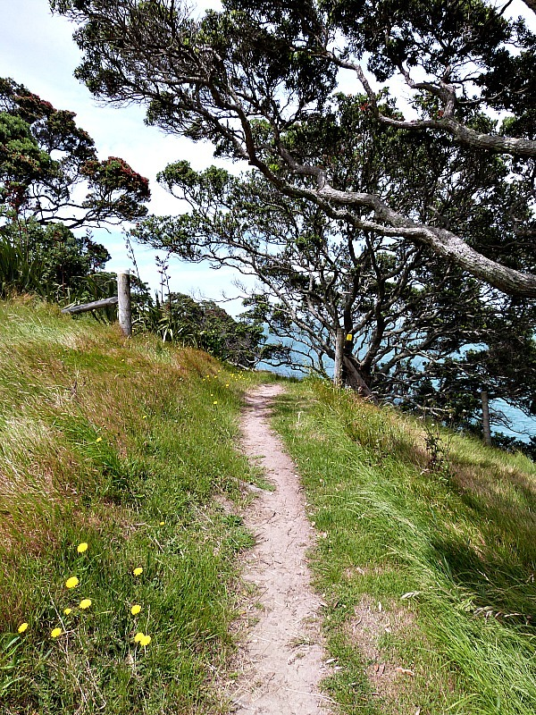 Hiking along the coast of Waiheke Island in New Zealand