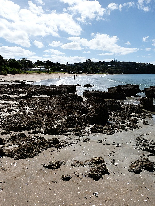 Oneroa Beach on Waiheke Island in New Zealand