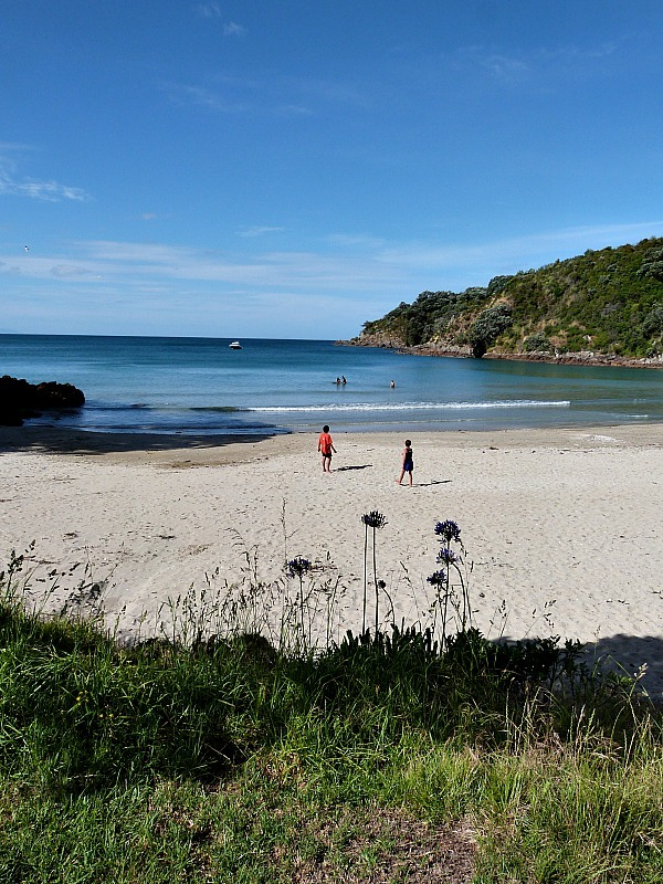 Little Oneroa beach on Waiheke Island in New Zealand