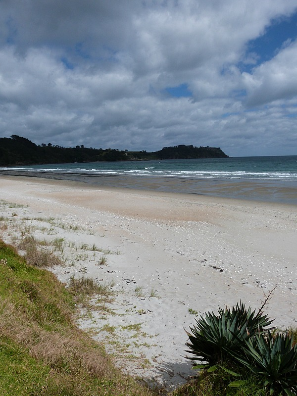 Waiheke Island is one of the fun places to go in Auckland