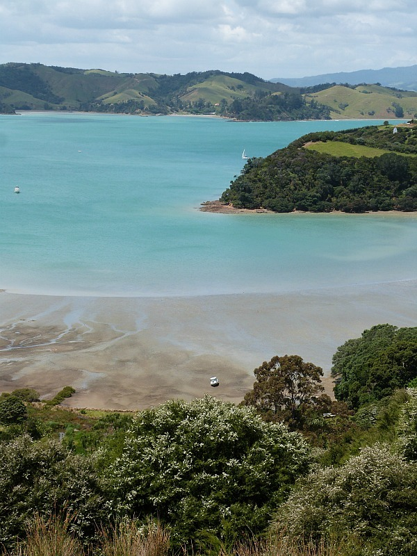 Exploring the hiking trails of Waiheke Island - one of the best day trips from Auckland city
