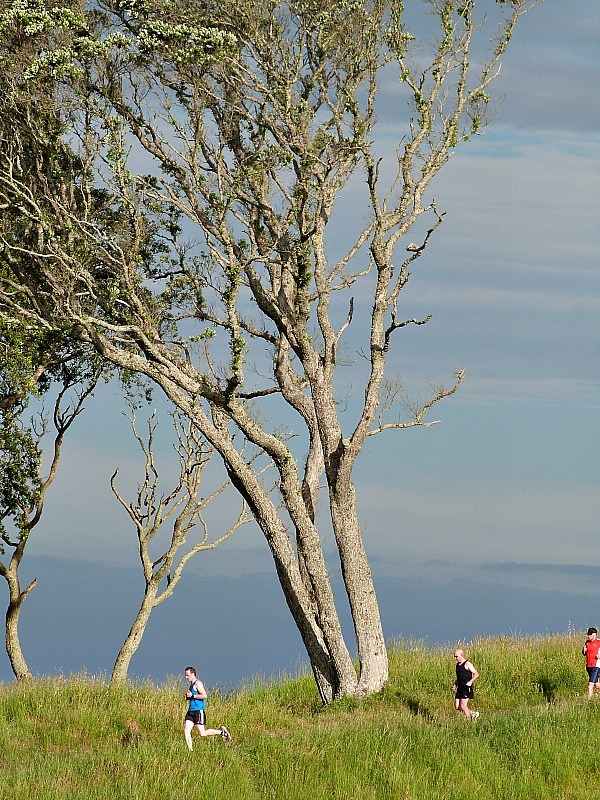 Climbing Mt Eden - one of the Best Auckland Activities