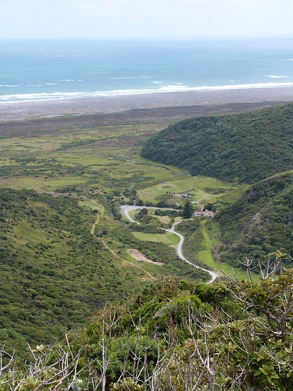 Hiking the Waitakere Ranges in Auckland