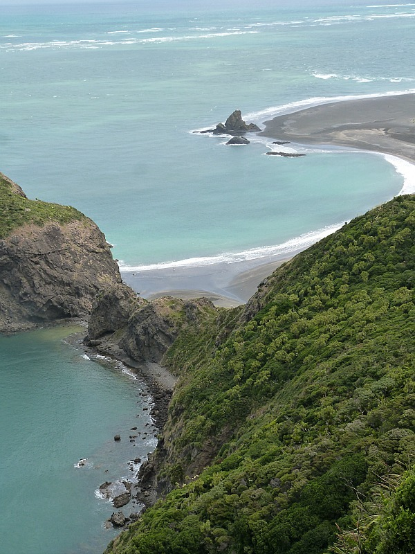 Hiking the Waitakere Ranges - one of the most fun things to do in Auckland