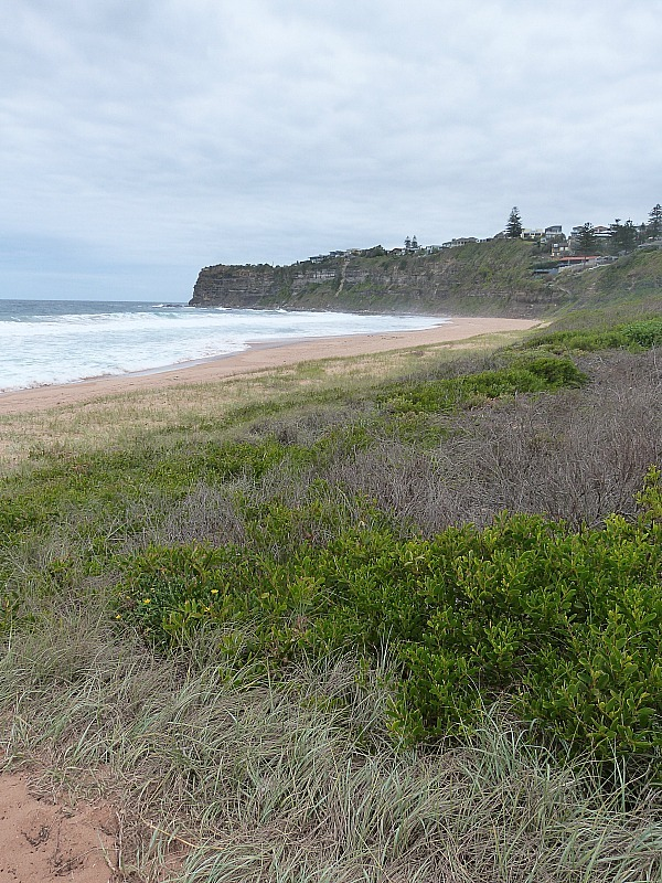 Sydney's Northern Beaches - One of the 30 reasons why I love Sydney