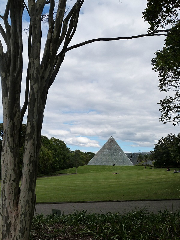 Sydney Botanical Gardens - One of the 30 reasons why I love Sydney
