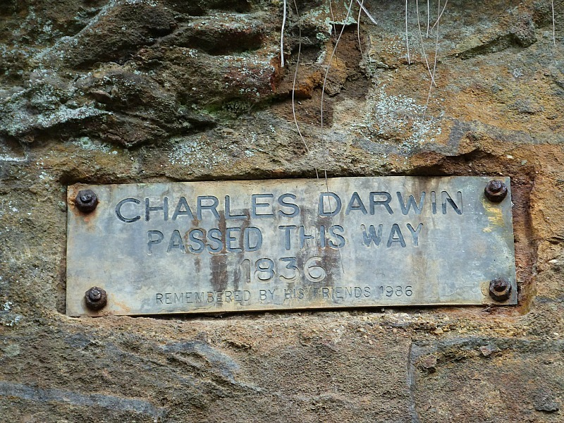 Charles Darwin hike - one of the best Blue Mountains hikes