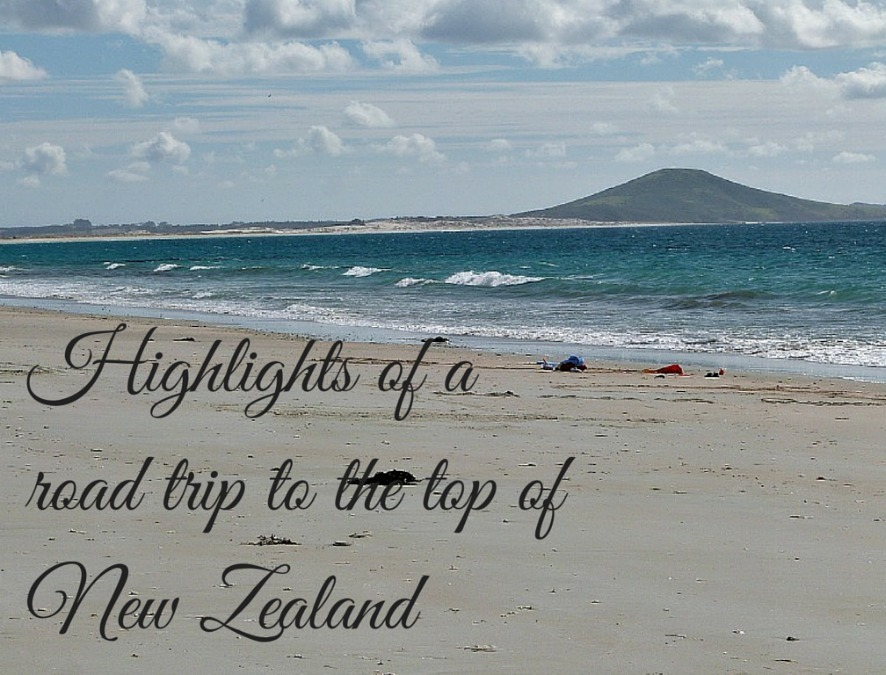 Highlights of a road trip to the top of New Zealand