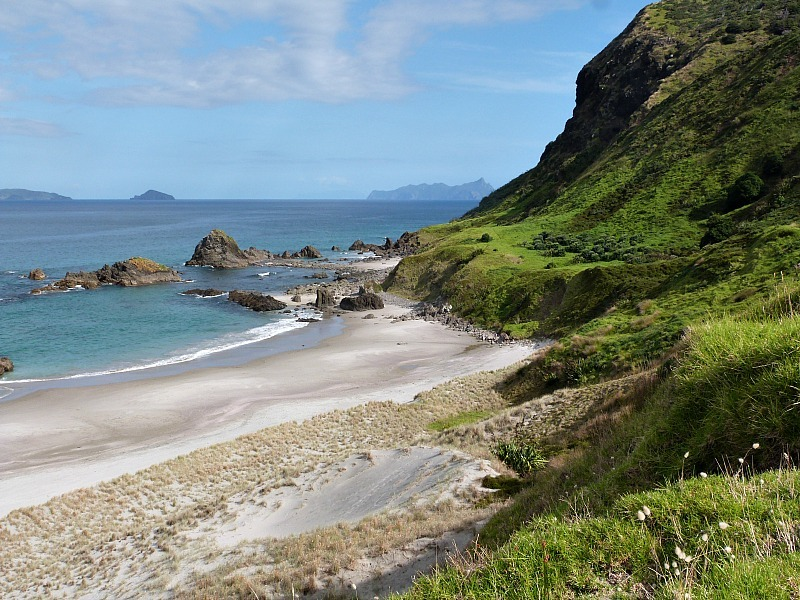 Ocean Beach in Whangarei Heads - a highlight of any Northland New Zealand Road Trip Itinerary