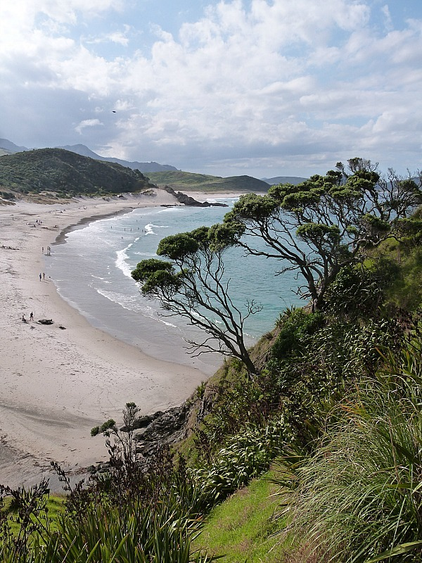 View over Ocean Beach in Whangarei Heads - a highlight of any Northland New Zealand Road Trip Itinerary