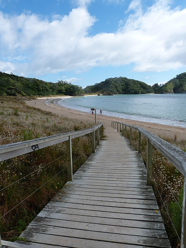 Matapouri Beach on the Tutukaka Coast of New Zealand is one of the best beaches in Northland