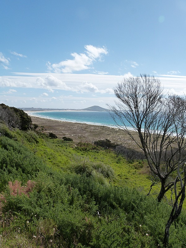 Matai Bay in Northland New Zealand - a highlight of any Northland New Zealand Road Trip Itinerary