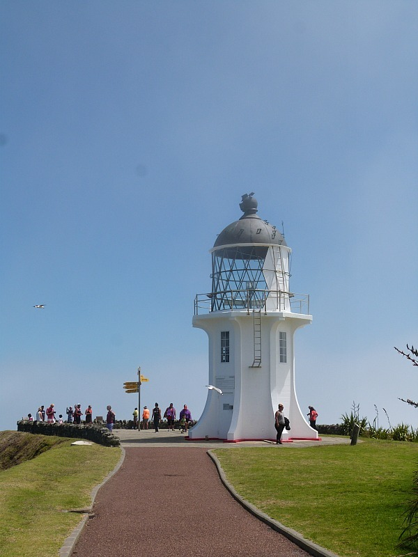 Cape Reinga in New Zealand - part of The Ultimate Northland New Zealand Road Trip Itinerary