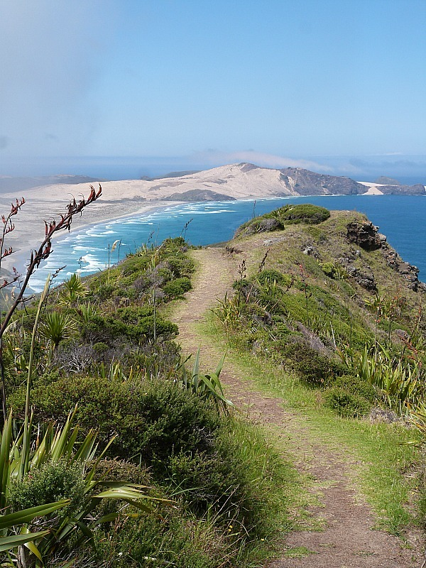 Incredible views from Cape Reinga New Zealand - a highlight of any Northland New Zealand Road Trip Itinerary