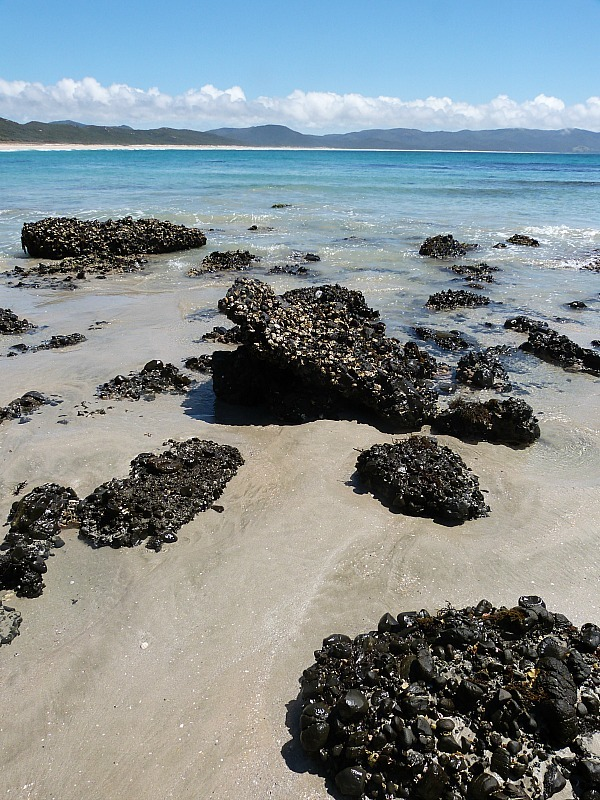 Spirits Bay in Northland New Zealand - a highlight of any Northland New Zealand Road Trip Itinerary