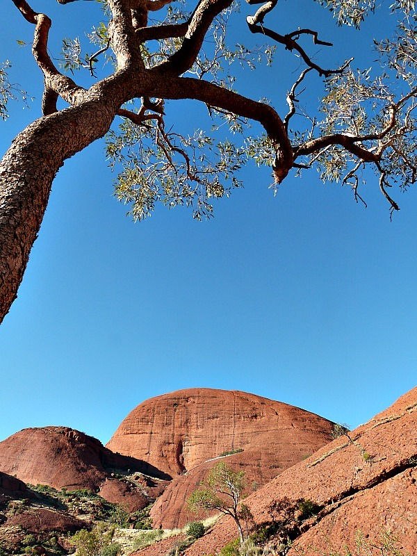 Views of beautiful Uluru in Australia