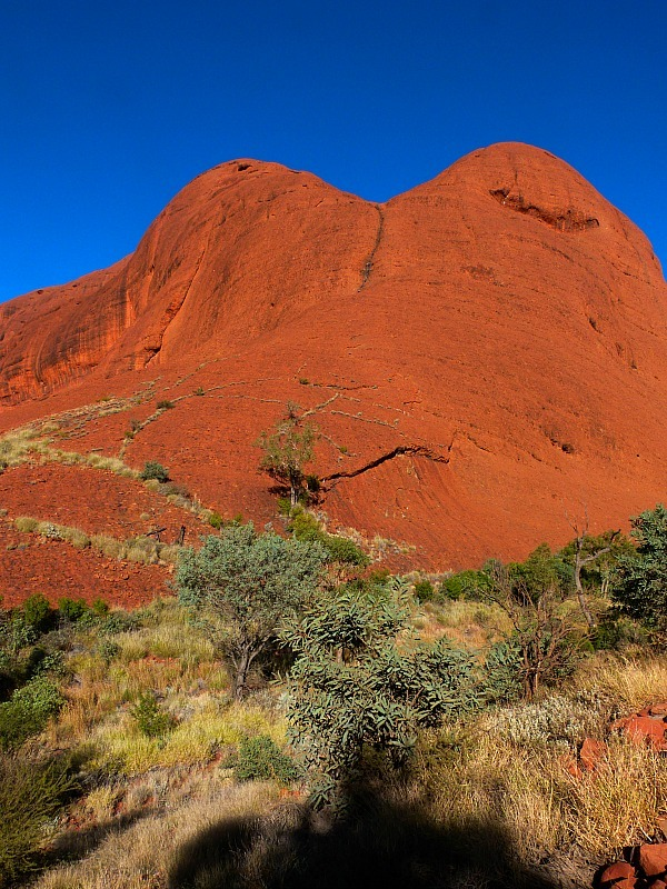 Kata Tjuta, or The Olgas, in the Australian Outback