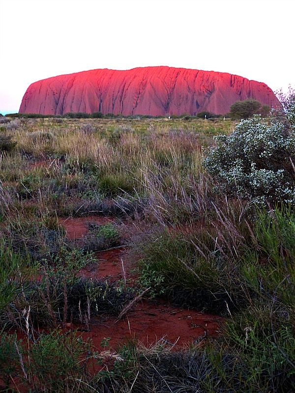 Sunset over Uluru in the Australian Outback