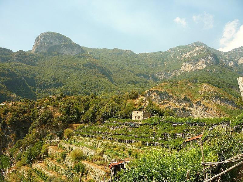 Farmland around Pontone on the Amalfi Coast of Italy