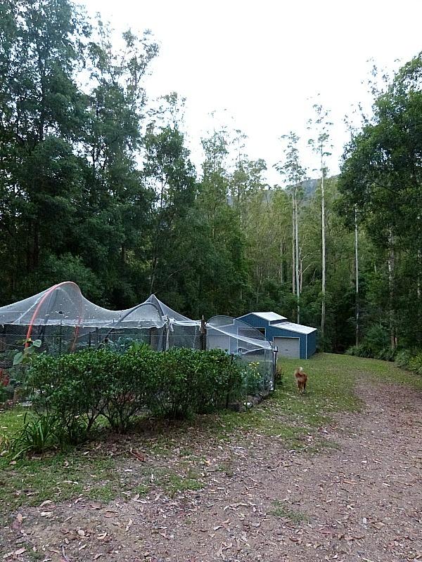Greenhouses at Treetops in Bellingen, Australia