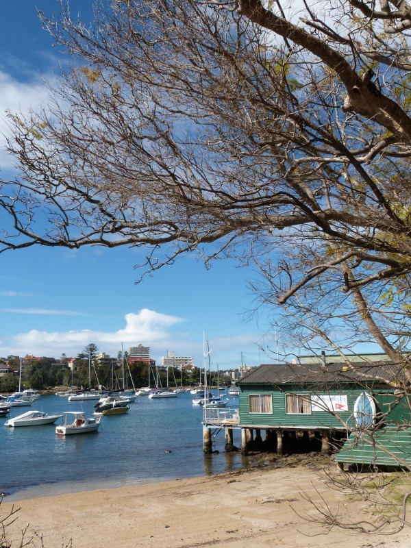 There are a couple of marinas along the Manly to Spit walk