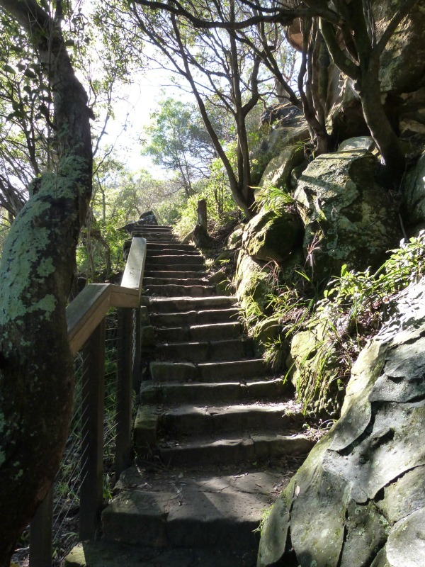 Rock staircase on the Manly to Spit walk in Sydney