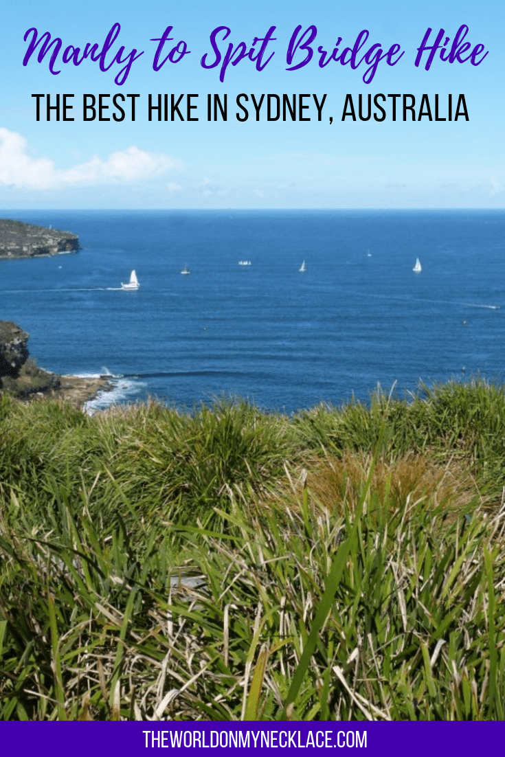 Manly to Spit Walk - The Best Hike in Sydney