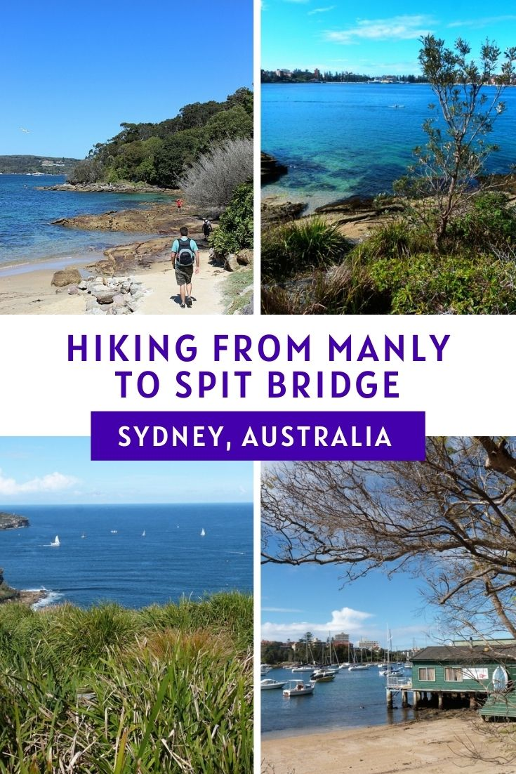 The Manly to Spit Bridge Walk The Best Way to See Sydney Harbor
